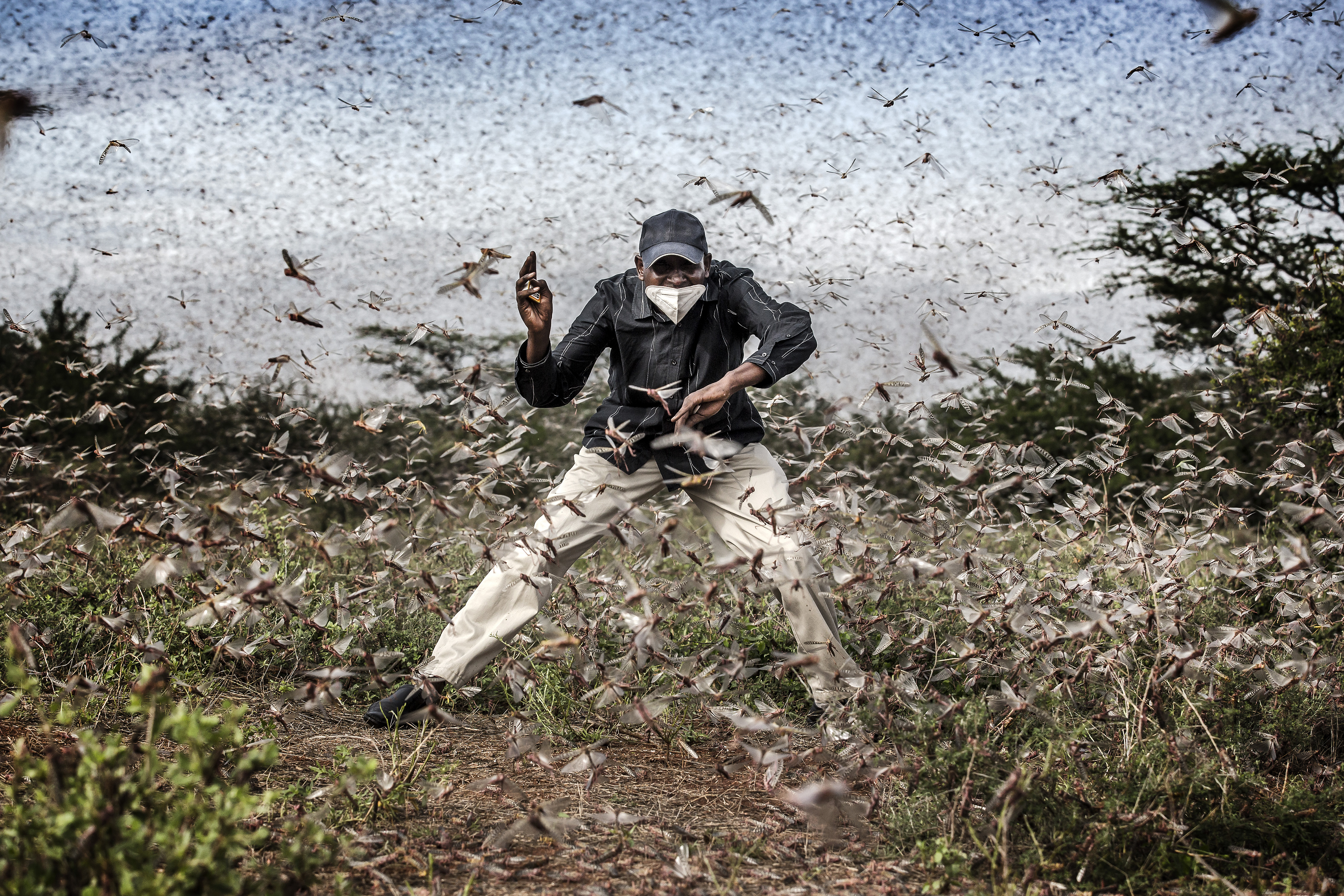 Fighting Locust Invasion in East Africa, Luis Tato, Spain, for The Washington Post