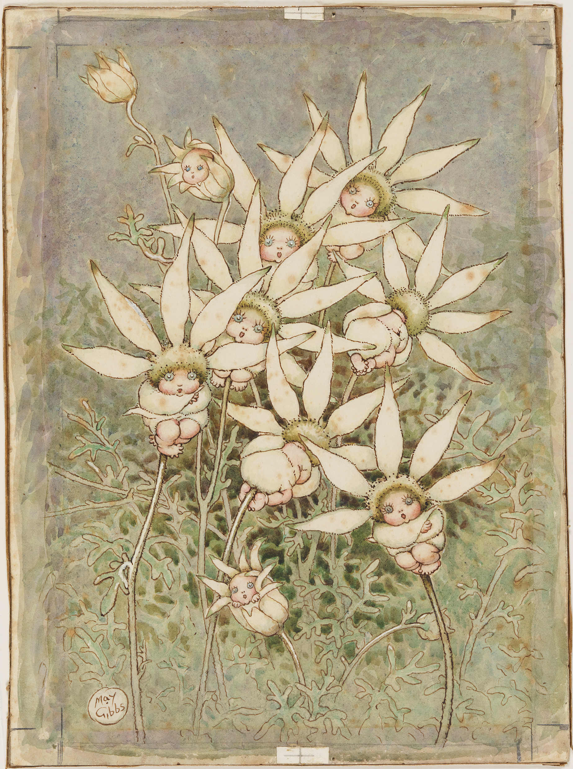 A watercolour painting of little babies with big, blue eyes appearing to grow out of the centre of Flannel flowers