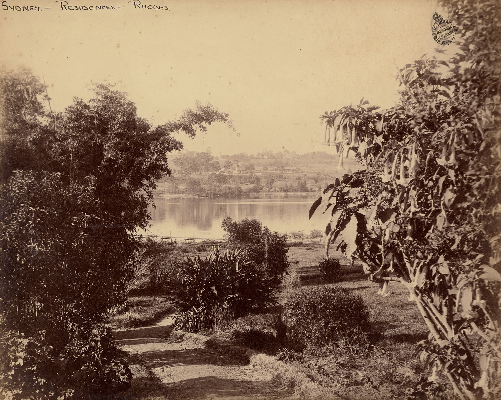 Photograph of a lake through some bushes, with a landscape and some building structures in the background.
