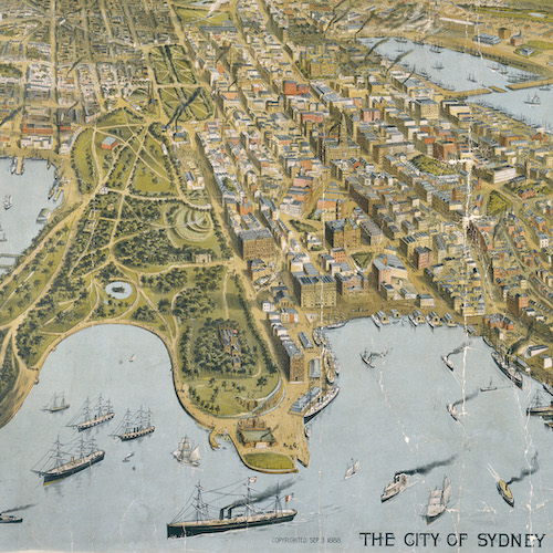The City of Sydney [a bird's-eye view] [cartographic material] / M.S. Hill