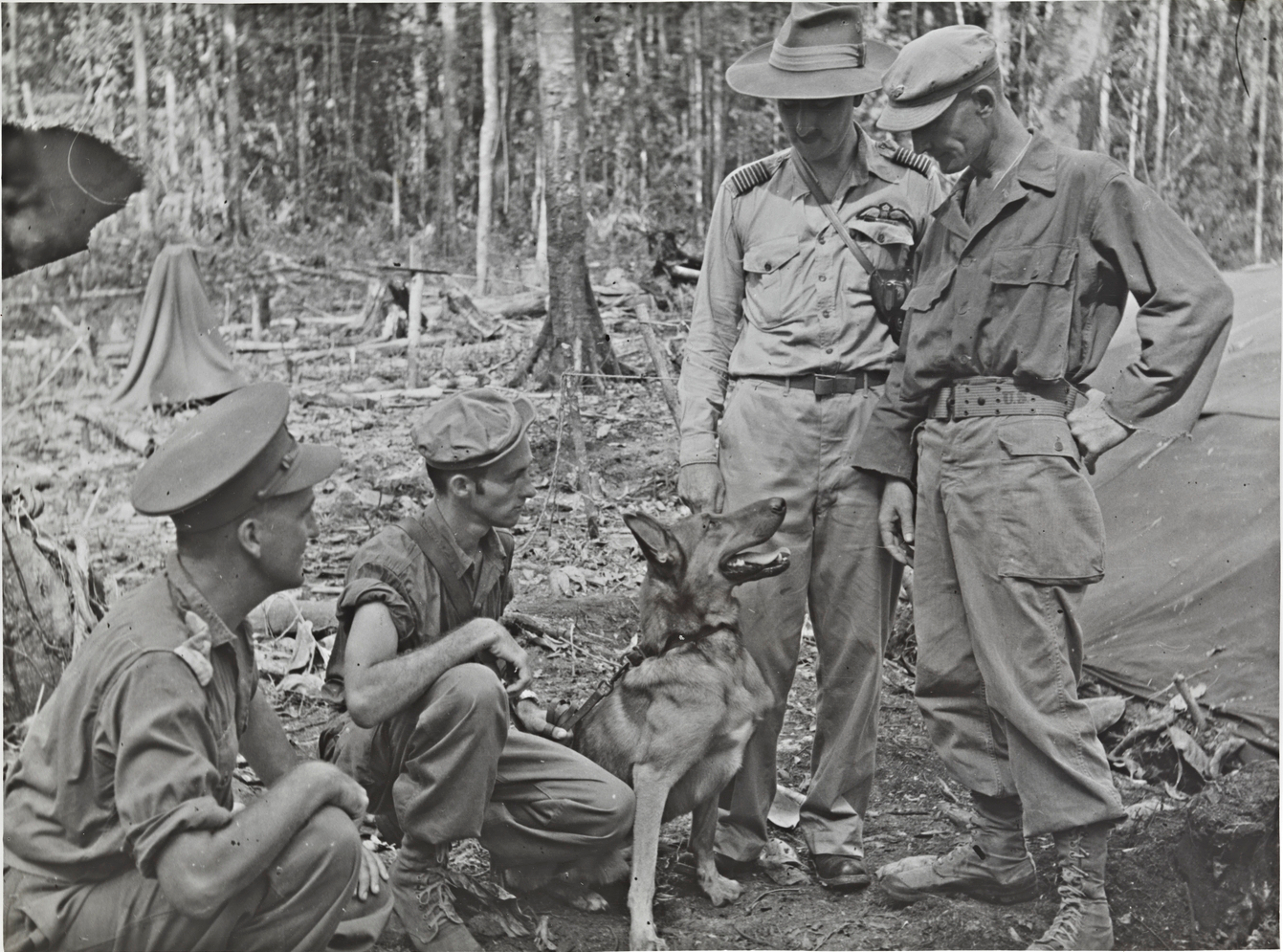 Military operations - the islands, New Guinea area - Goodenough Island