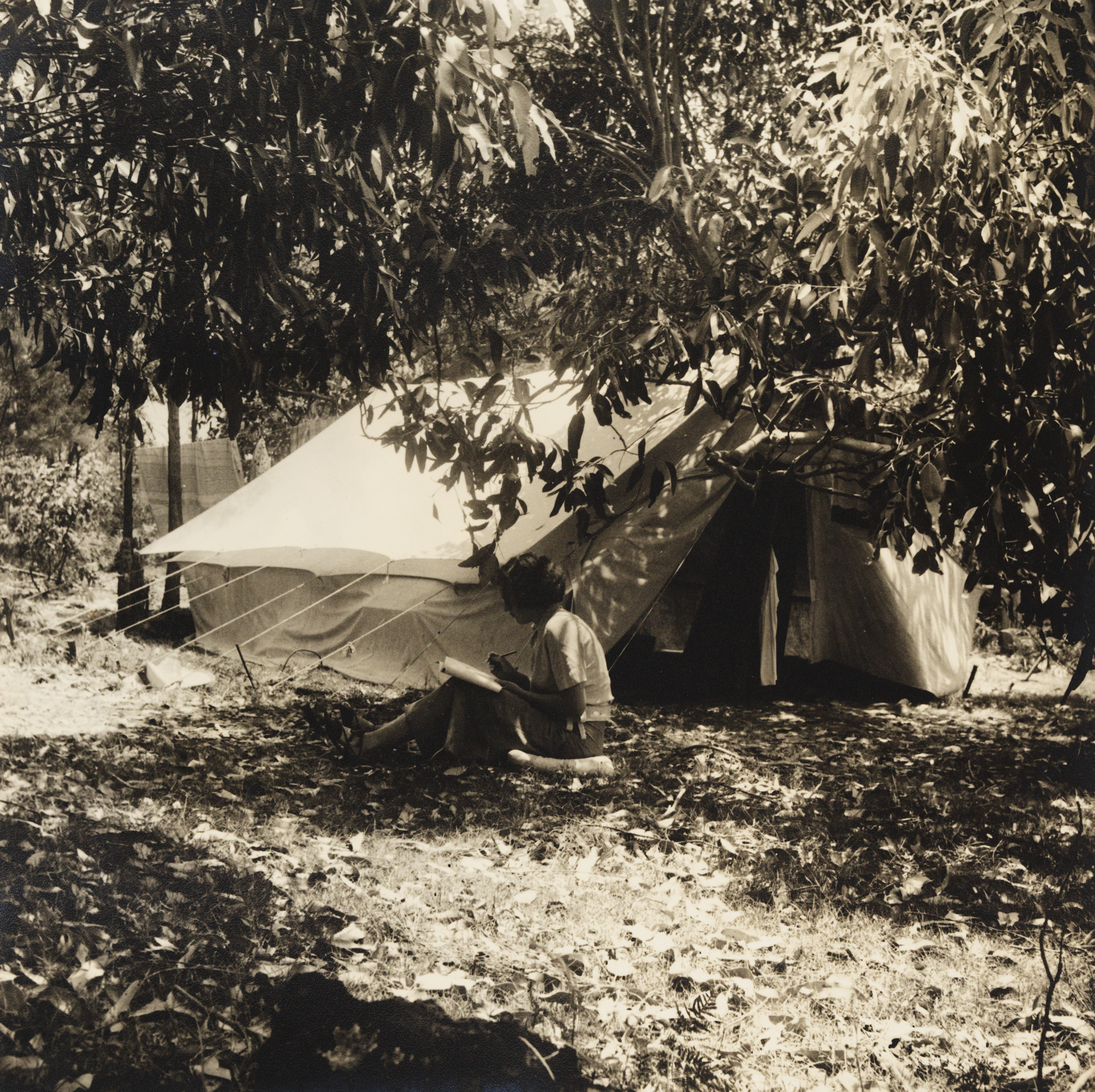 A sepia photograph of a woman sitting writing outside a canvas tent - the ground covered in eucalyptus leaf litter which has fallen from the branches that frame the photography. Drying washing hangs behind the tent.