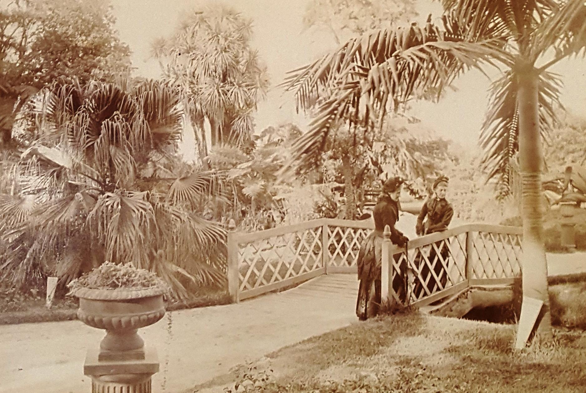 Botanical Gardens Sydney, 1886