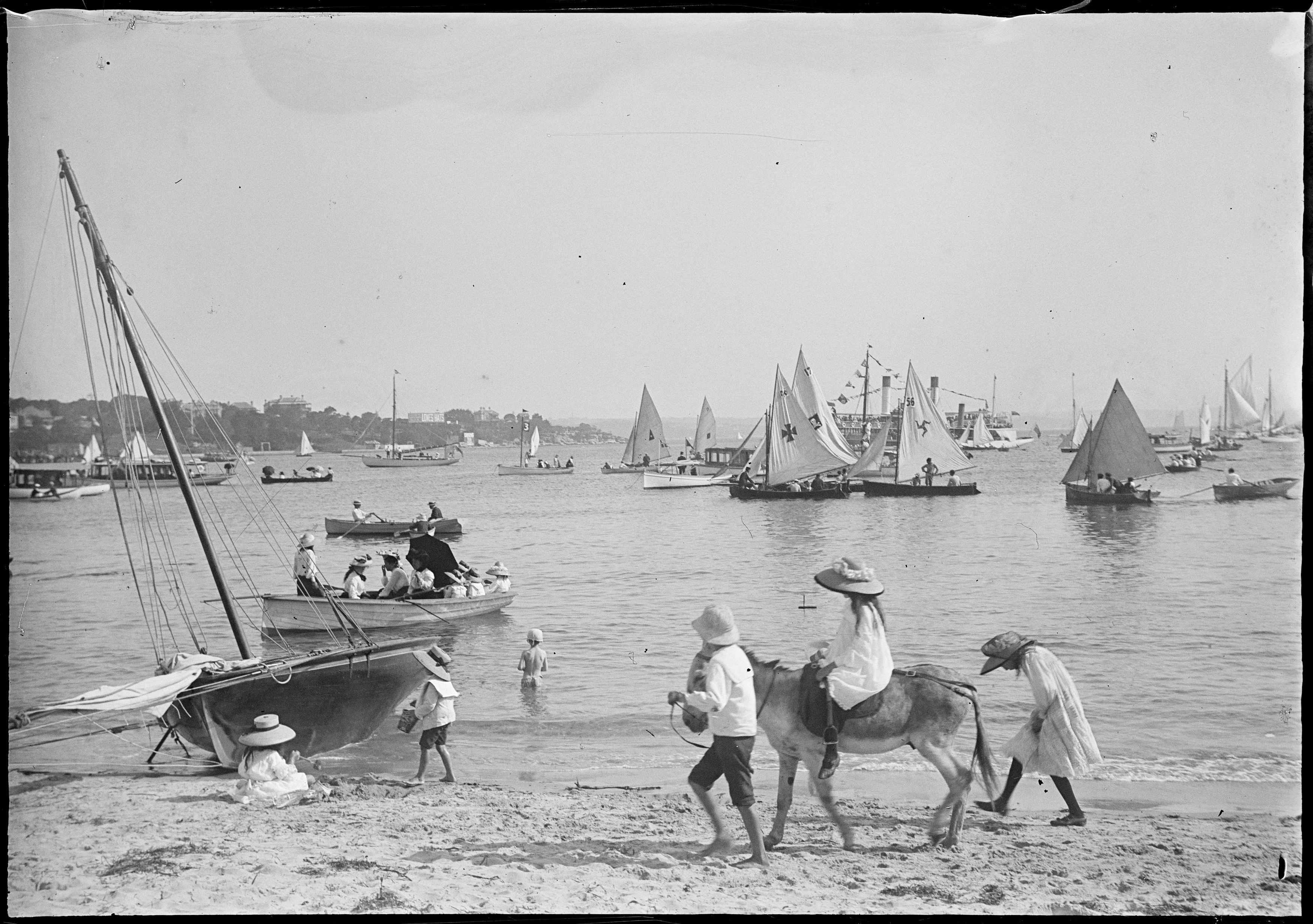 Donkey rides at Manly Cove, with children on sand and sail boats