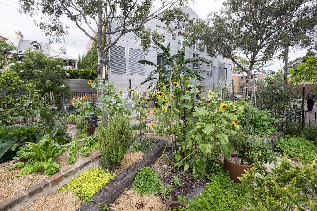 Charlie's Garden, Darlington