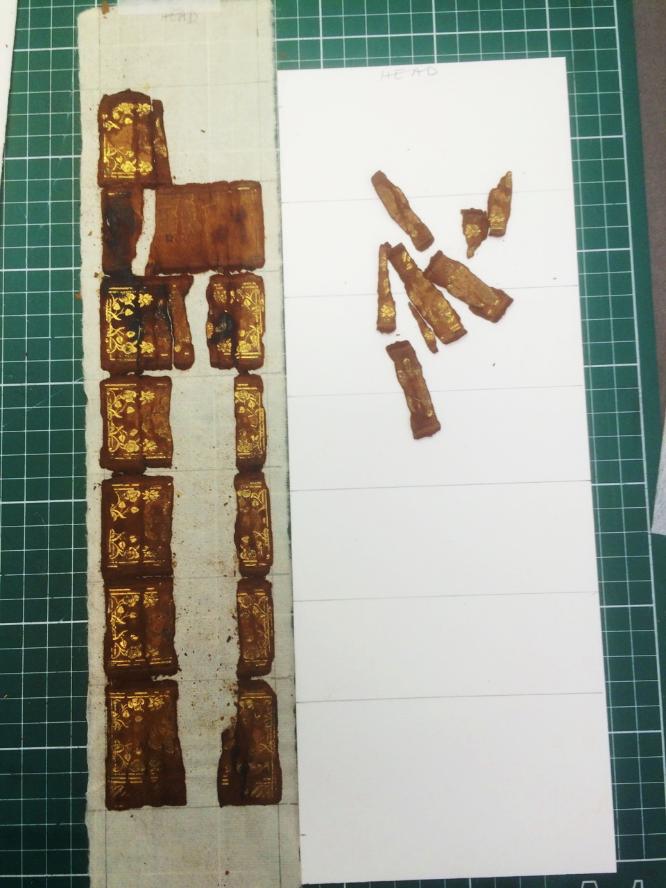 Spine of book in pieces
