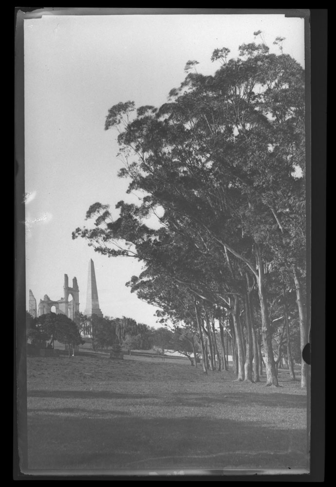 Remains of Garden Palace in the Botanic Gardens, 1882