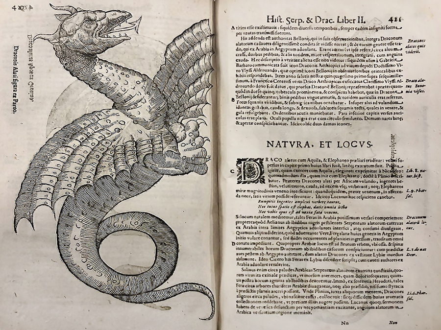 Illustration of a dragon in an old book.