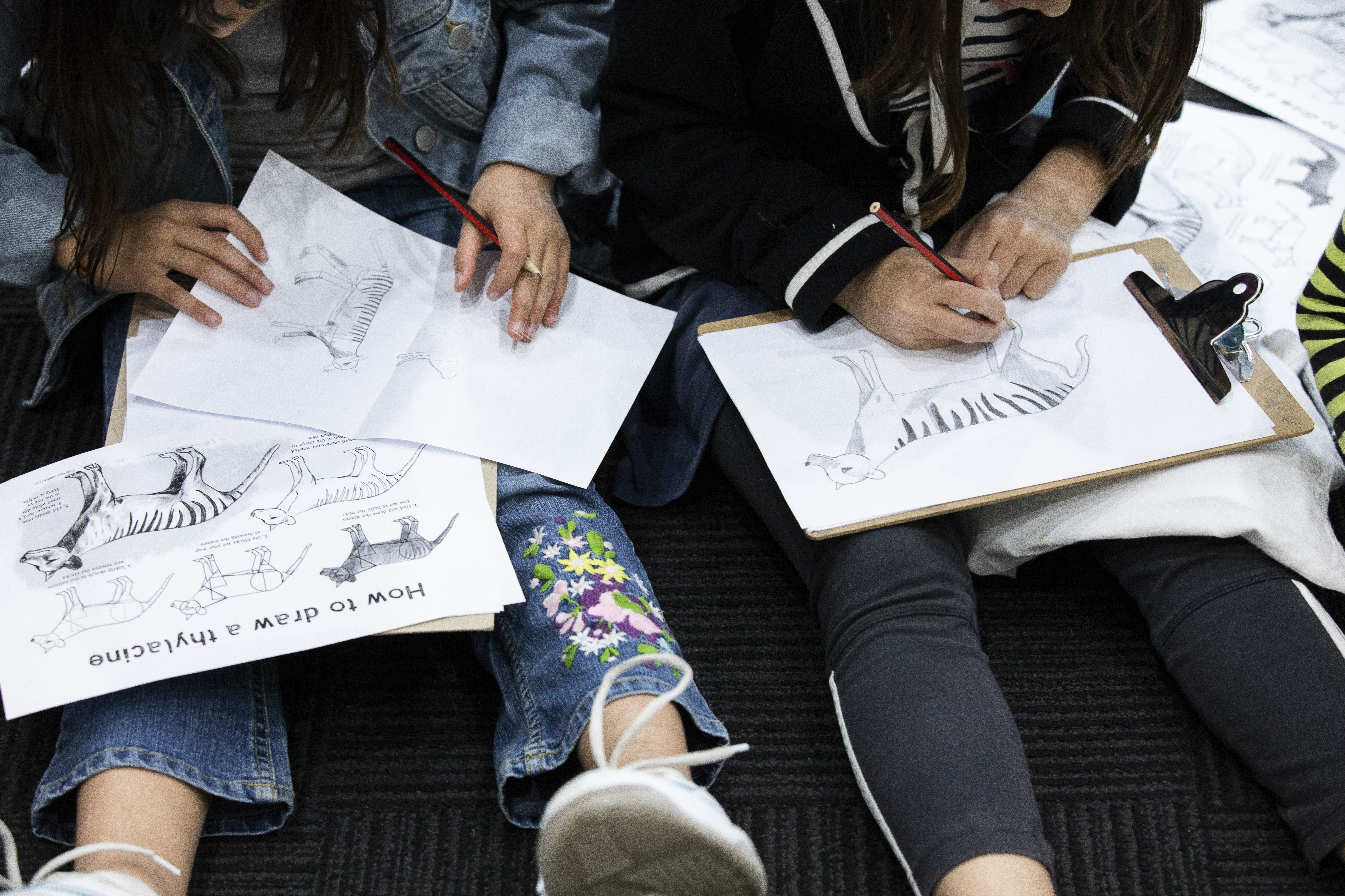 Kids drawing a thylacine