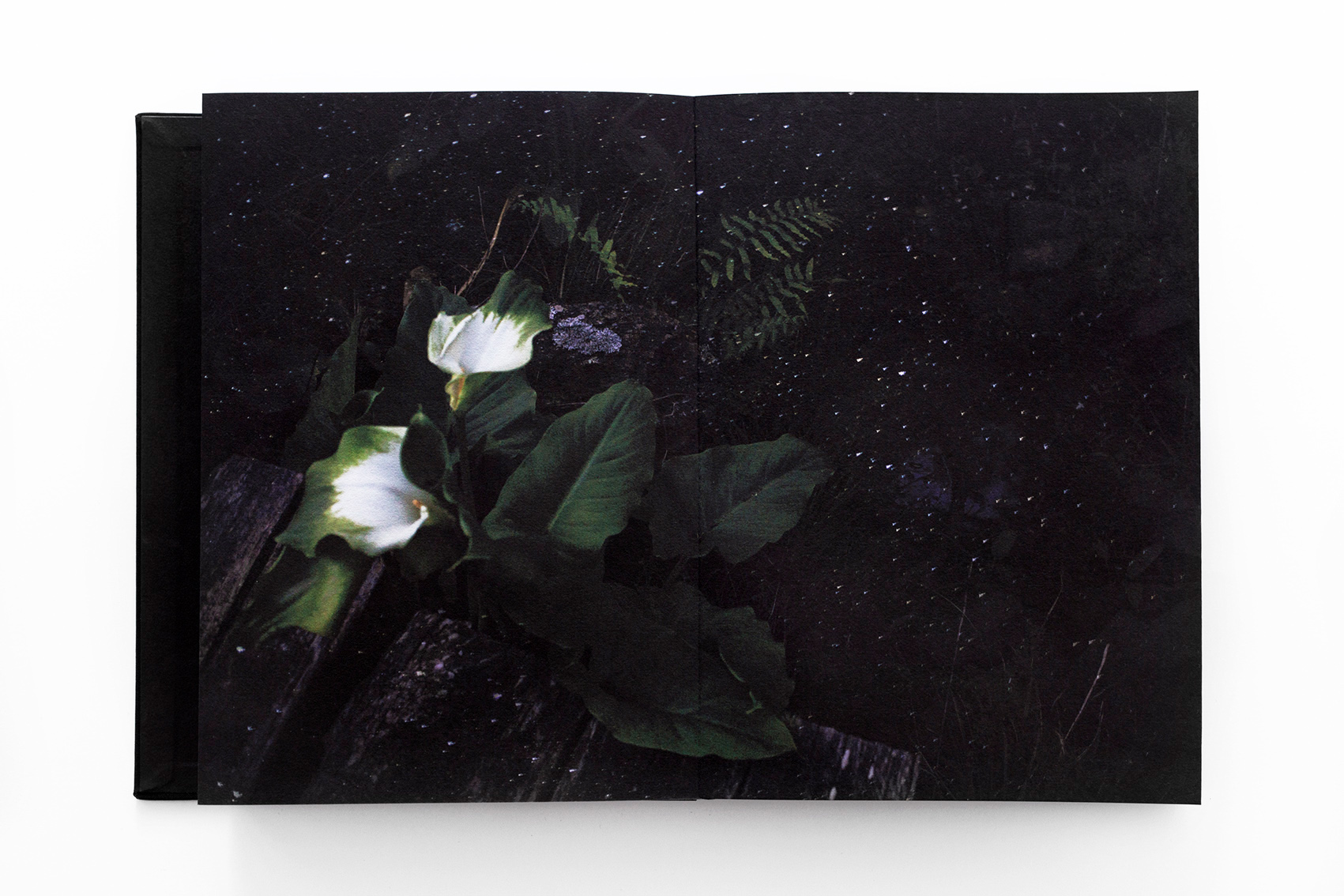 A book open to a photograph of flowers.