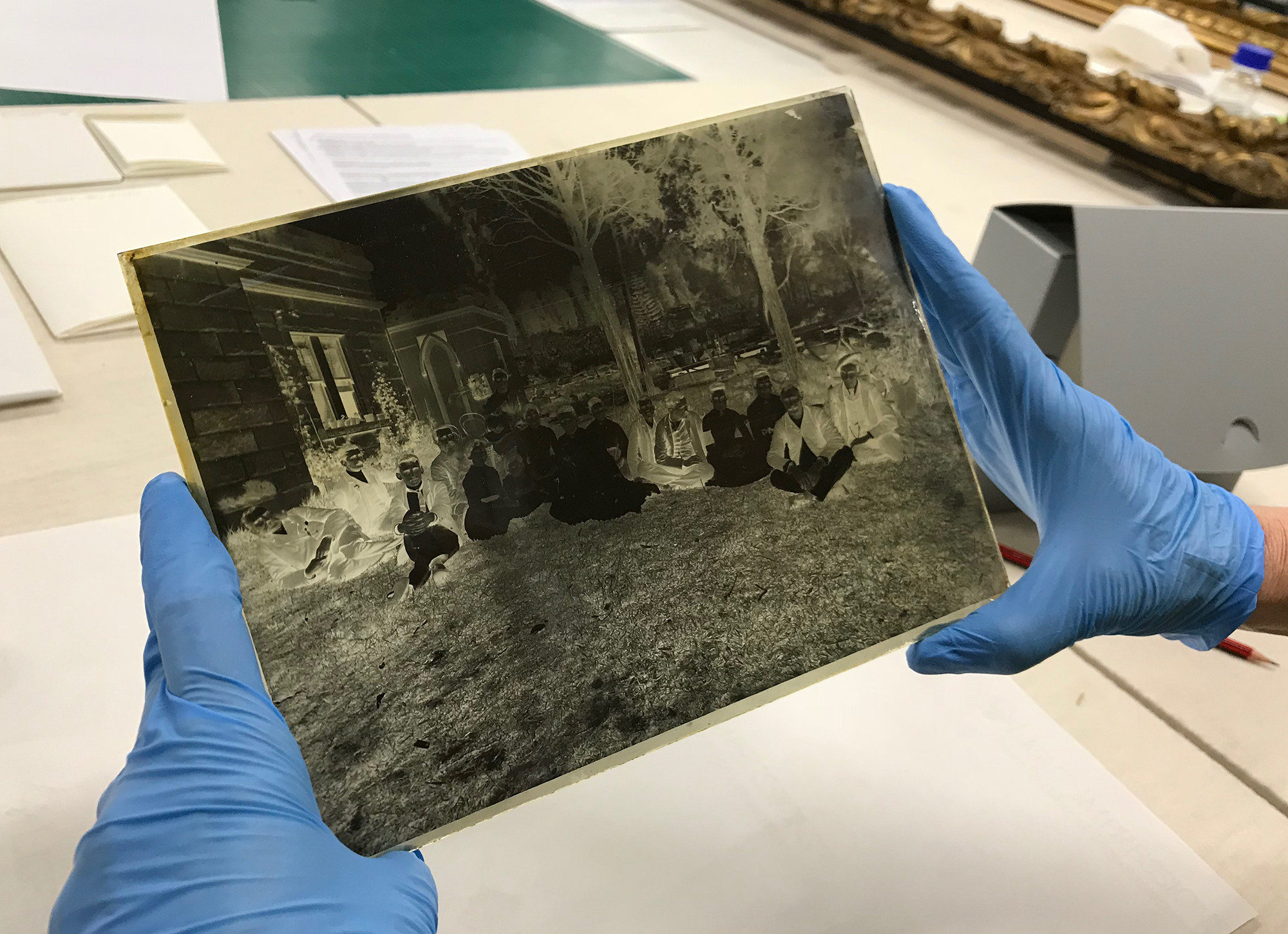Photograph of blue latex gloved hands, holding a glass plate negative.