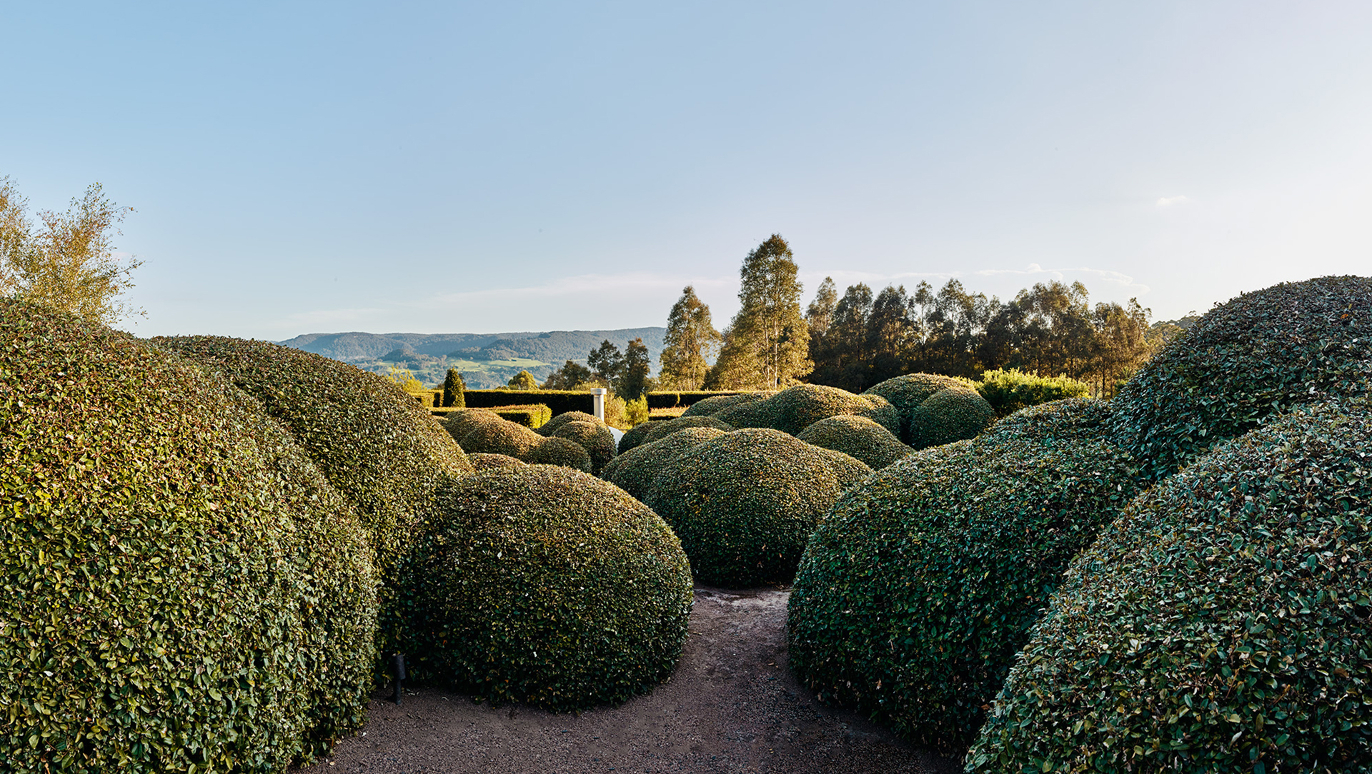 Dome shaped hedges sit in the foreground, with a view of a mountain range in the far distance.