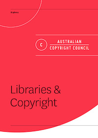 Cover for Libraries and copyright