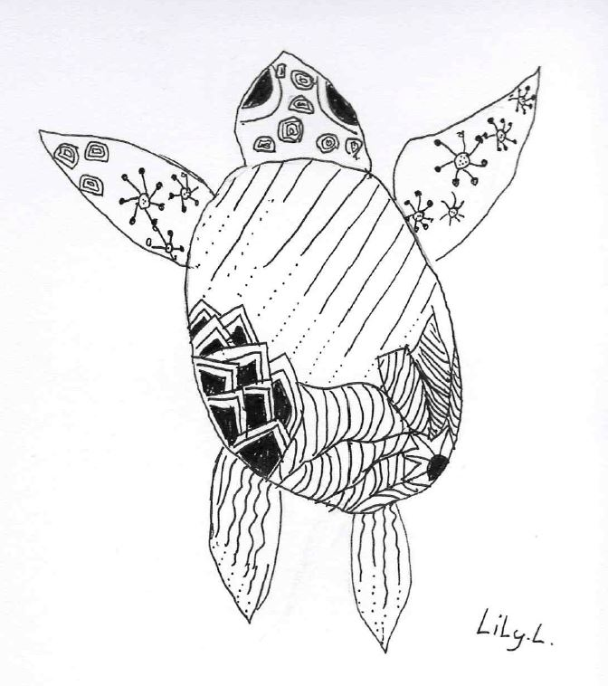 Lily - Turtle