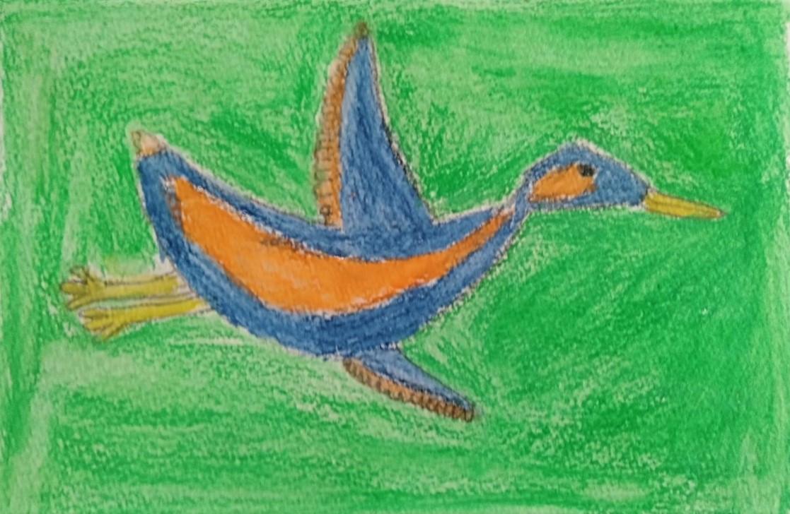 Lucas - Bird