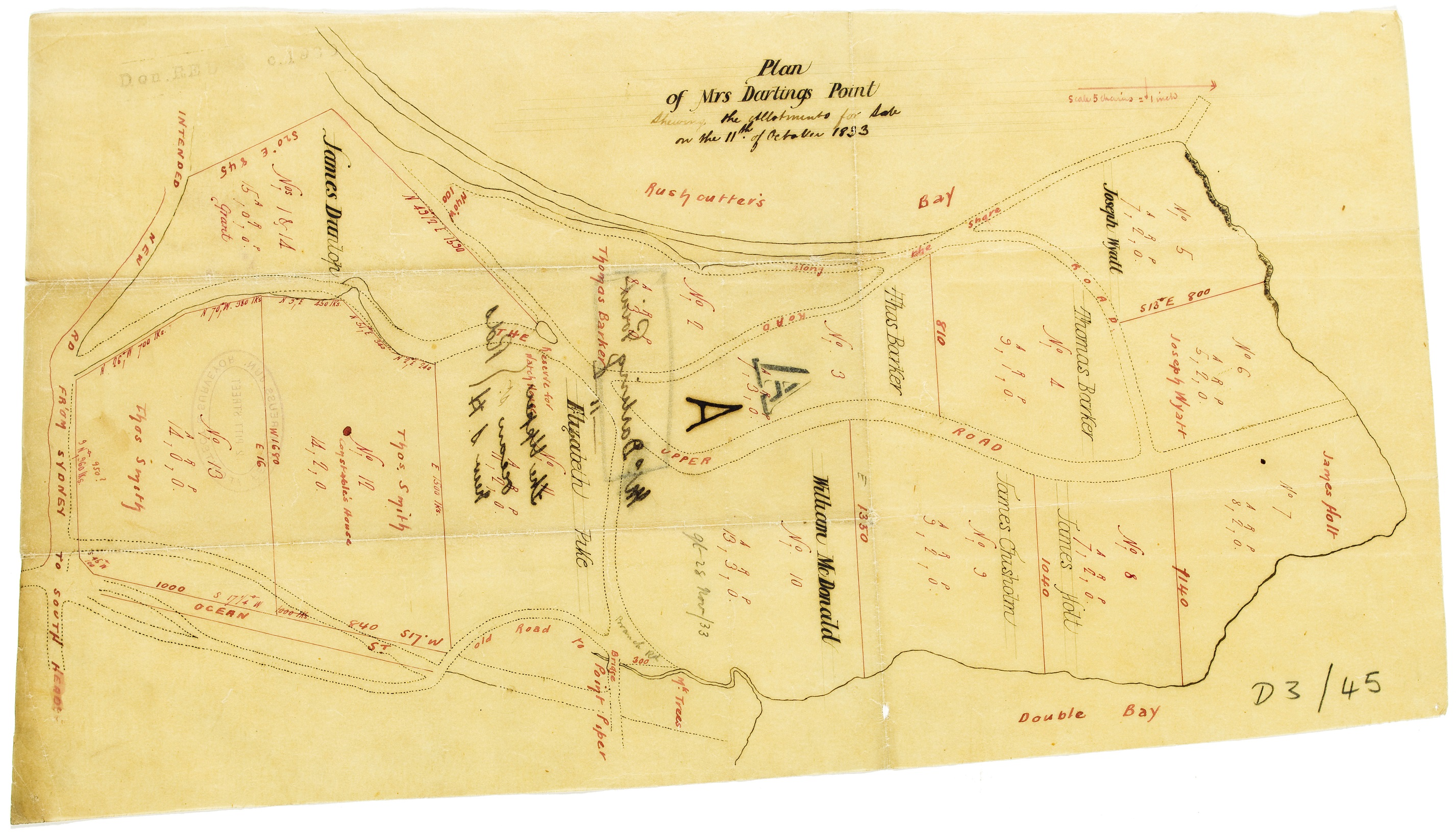 plan_for_mrs_darlings_point_shewing_the_allotments_for_sale.jpg