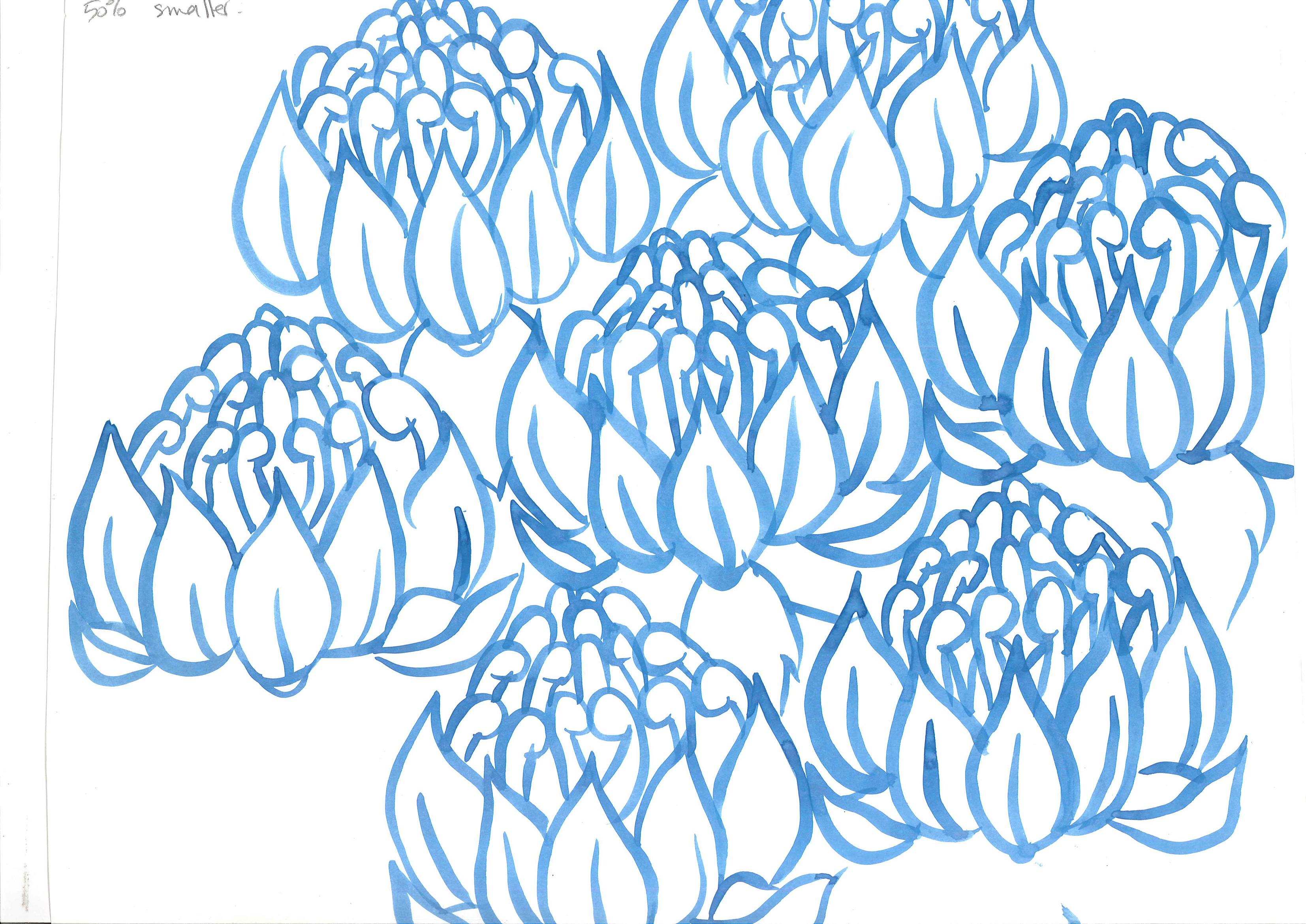 blue ink painting of repeated waratah motif. Handwriting reads: 50% smaller