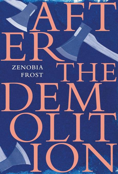 Cover image of the book After the Demolition.