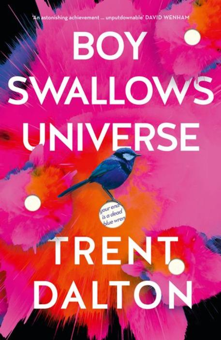Boy Swallows Universe cover