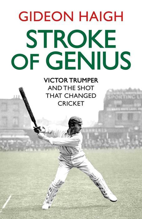 Cover image of Stroke of Genius