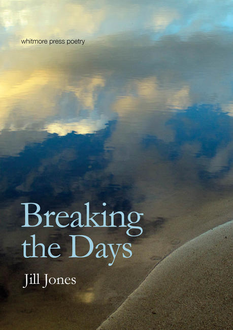 Book cover for Breaking the Days by Jill Jones