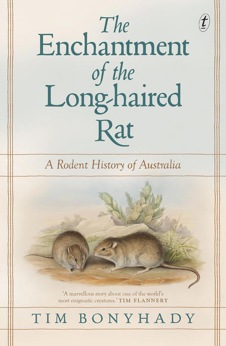 Cover image of the book The Enchantment of the Long-Haired Rat.