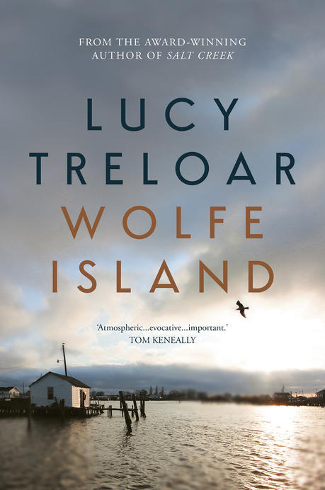 Cover image of the book Wolfe Island.