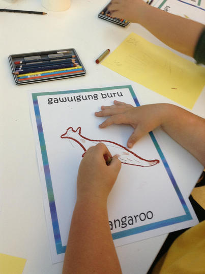 Child drawing an image of a Kangaroo