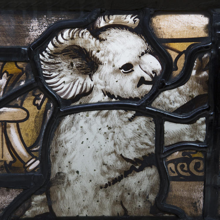 Stained glass window with painting of koala