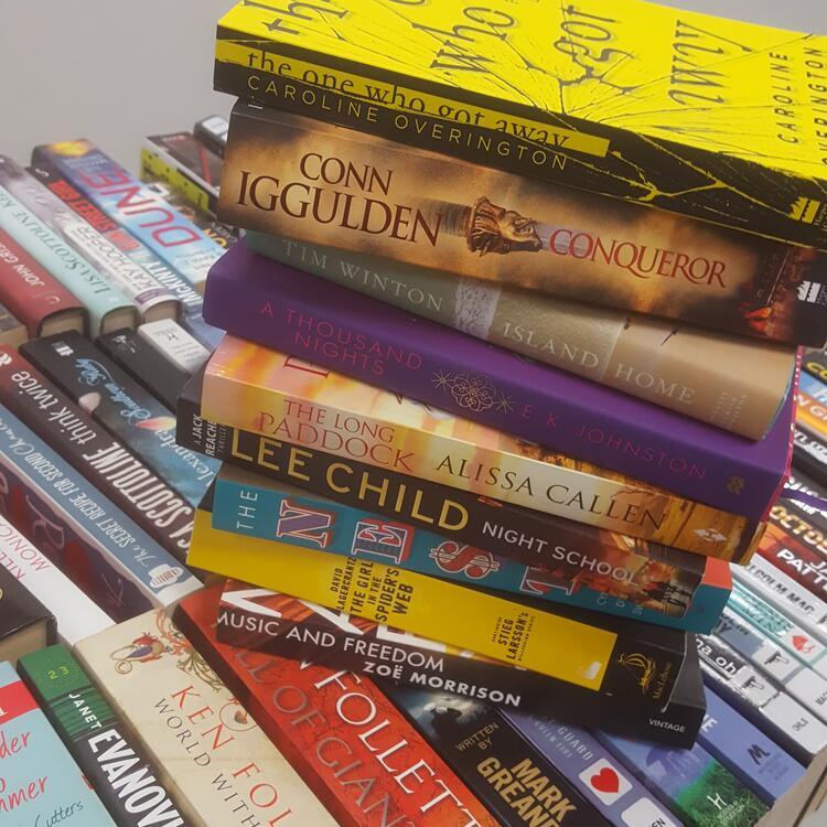 public library books