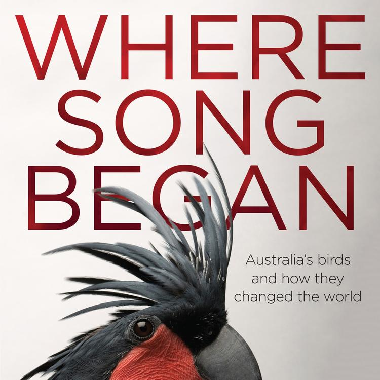 Where Song Began: Australia's Birds and How They Changed the World Tim Low