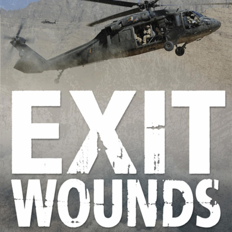 Military helicopter in the in mountainous landscape on book cover of Exit Wounds One Australian's War on Terror by Major General John Cantwell with Greg Bearup