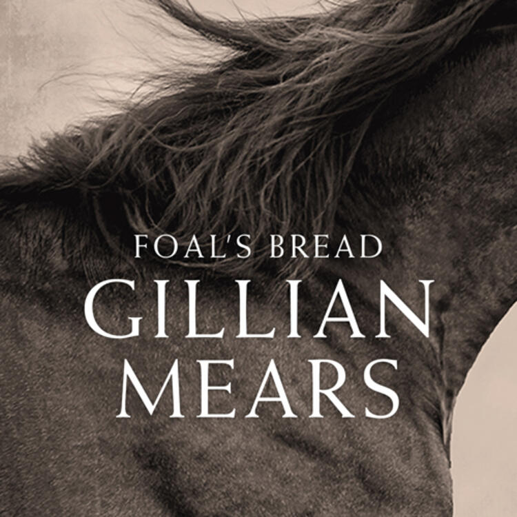 Neck of a horse with mane of hair side view for book cover of Foal's Bread by Gillian Mears