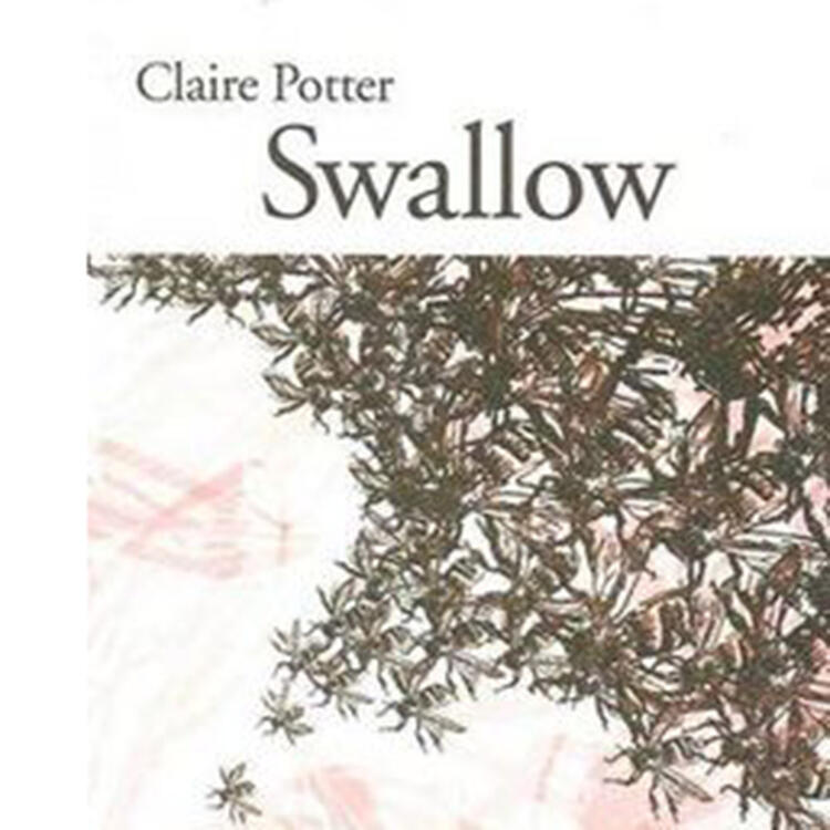 Swallow by Claire-Potter
