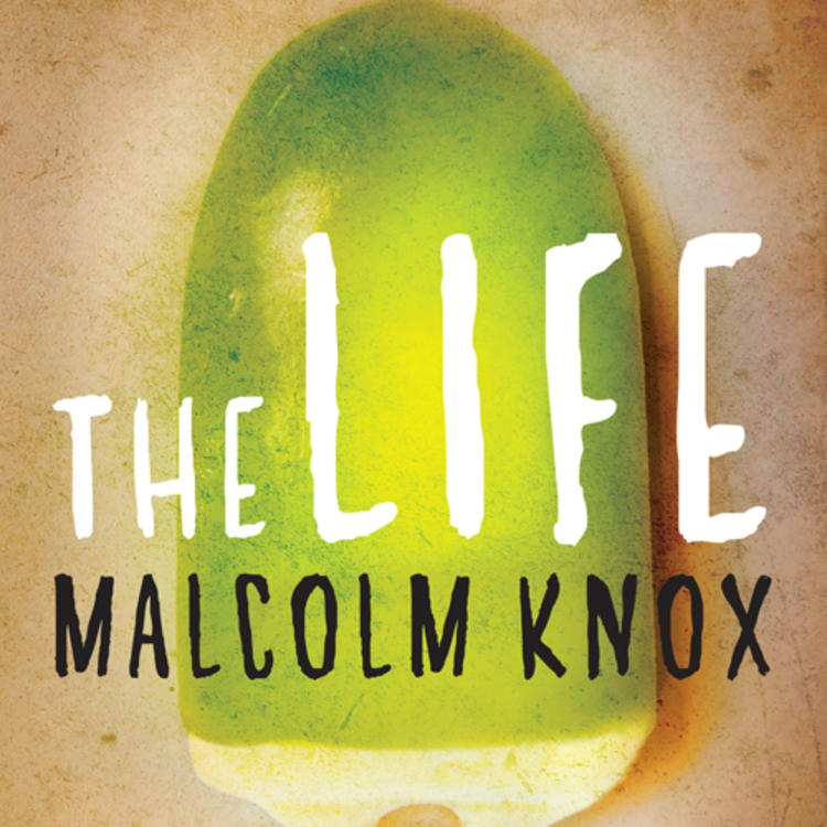 Ice cream on a stick starting to melt on book cover for The Life by Malcolm Knox