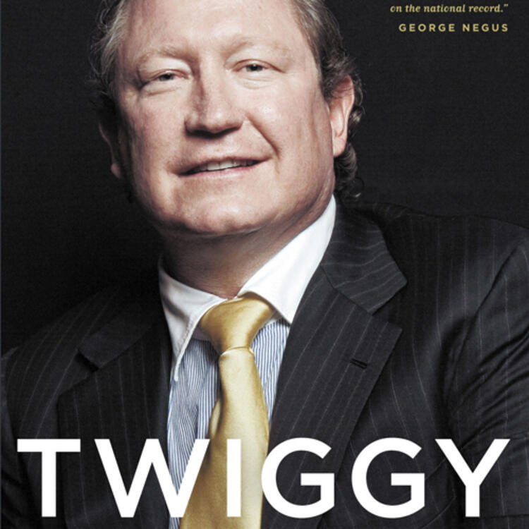 Western Australian mining magnate Andrew Forrest on book cover of Twiggy, the high stakes life of Andrew Forrest by Andrew Burrell