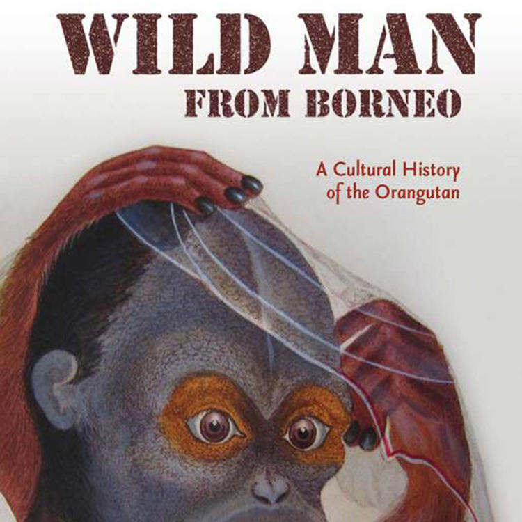 Wild Man from Borneo: A Cultural History of the Orangutan by Robert Cribb, Helen Gilbert and Helen Tiffin