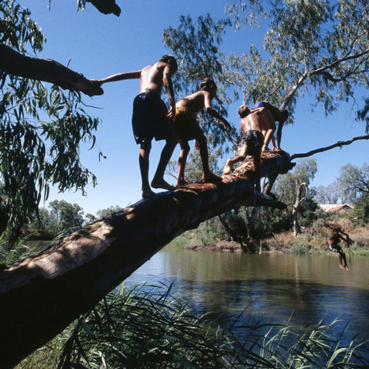 children jumping from a tree