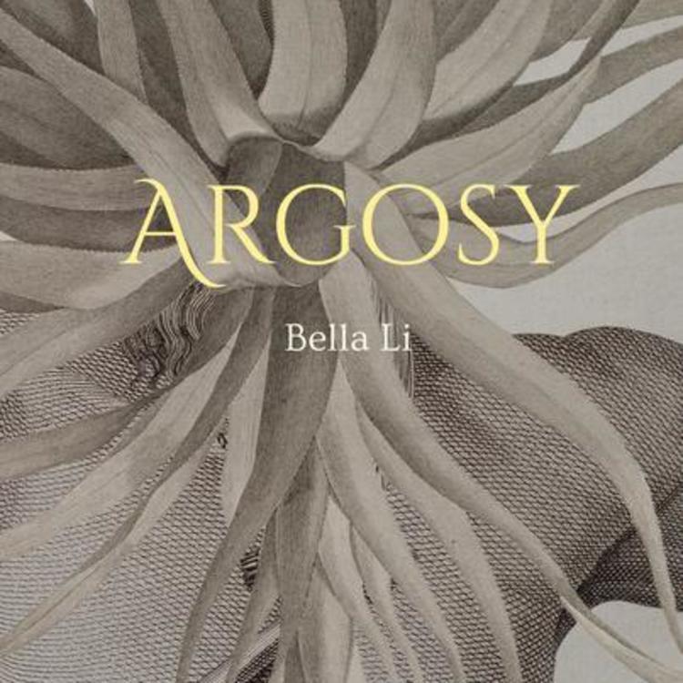 Cover image of Argosy