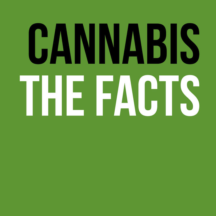 Cannabis facts pamphlet cover