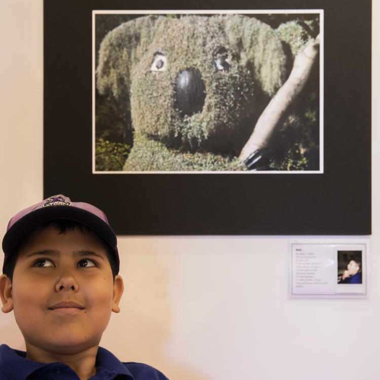 A young boy standing in front of a photograph of a koala