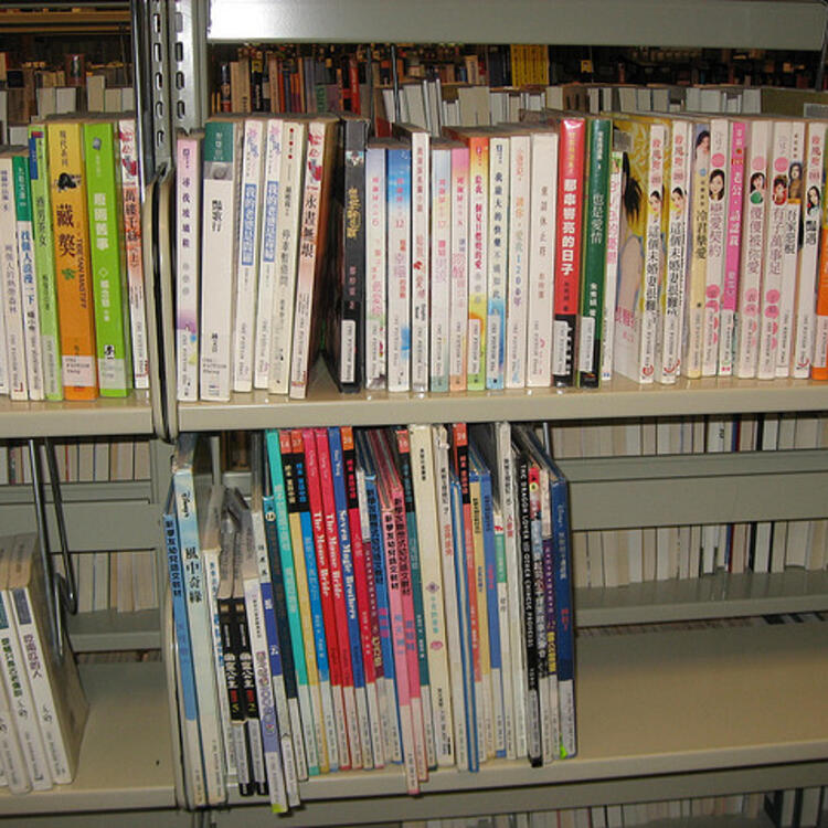 Foreign language books on book shelf