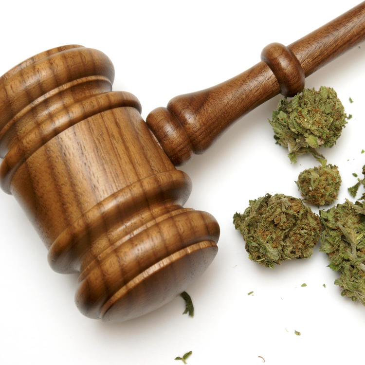 Wooden gavel sitting next to marijuana on white background