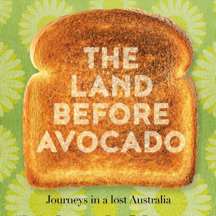 book cover for The Land Before Avocado