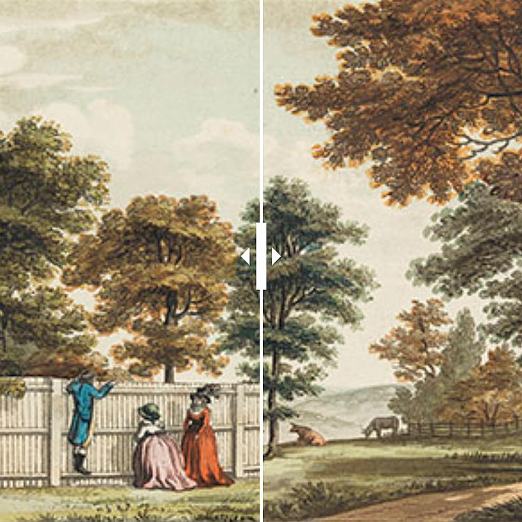 A scene in the garden at Brandsbury, where a sunk fence is used instead of the pale, which had been so injudiciously placed as to exclude a very rich and distant prospect.