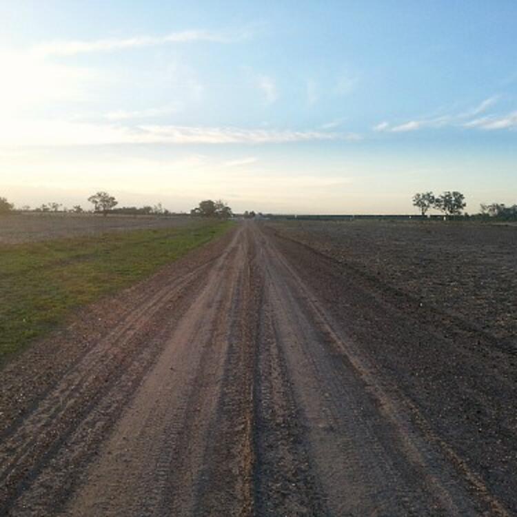 Long view of country dirt road. Photo credit Matt Finch 2016