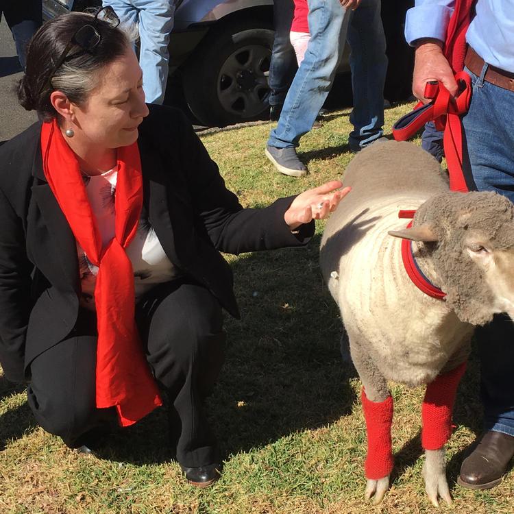 Lisa O'Sullivan with a sheep outside Merriwa Library