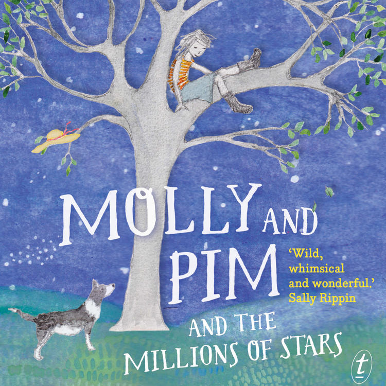 Book cover of Molly and Pim and the Million Stars