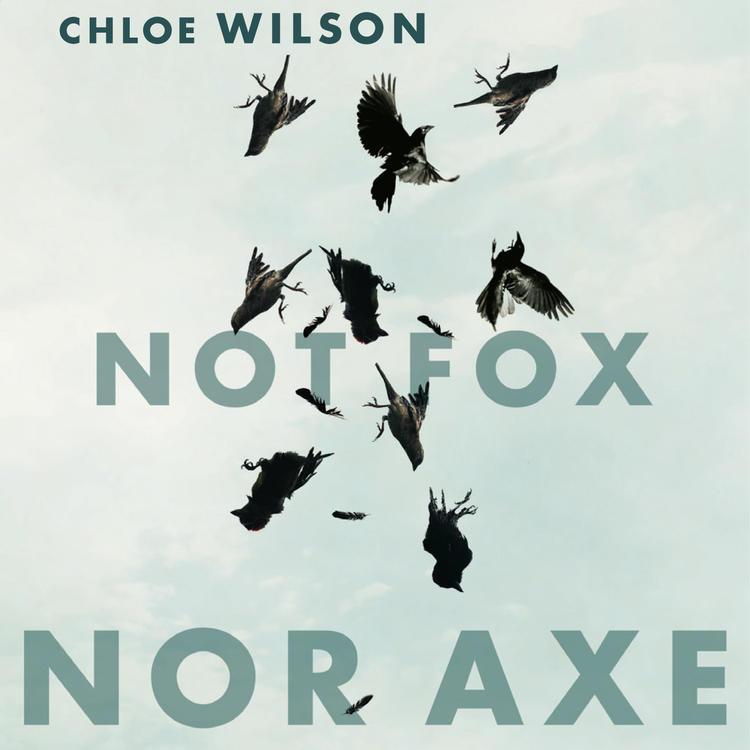 Cover of Not Fox Nor Axe