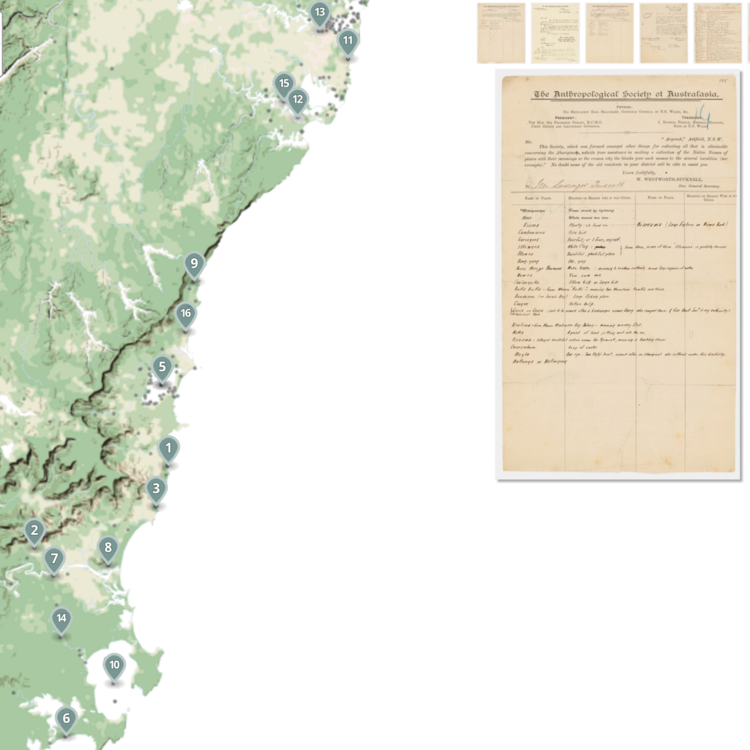 Weemala interactive experiment from the State Library of NSW